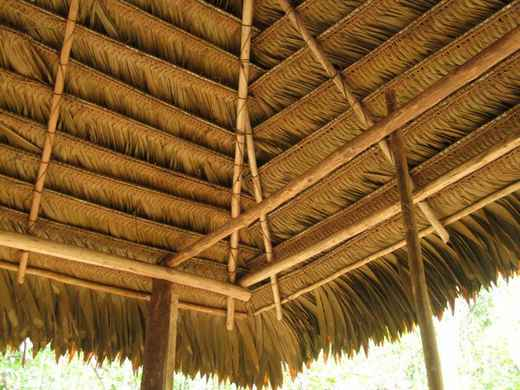 Forum post traditional palm thatched roof total peru for Does new roof affect appraisal